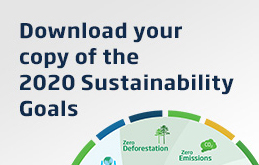 An image of the Sustainability Goals Infographic below the navy colour text, Download your copy of the 2020 Sustainability Goals. The content is situated on a grey to white gradient background.